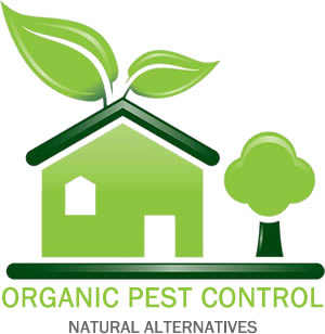Organic Natural Pest House Control