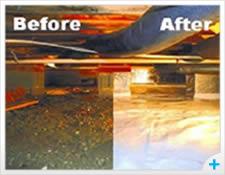 Before and After Crawl space care